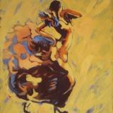 flamenco IX
