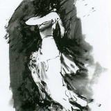 verkocht - flamenco XVI