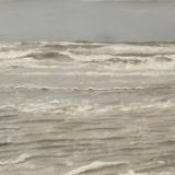 zee 151